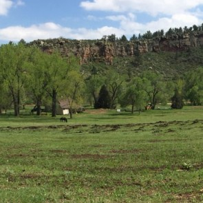 Planet Bluegrass Farm
